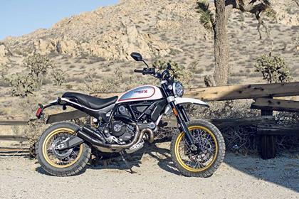 Ducati Scrambler Desert Sled static side profile