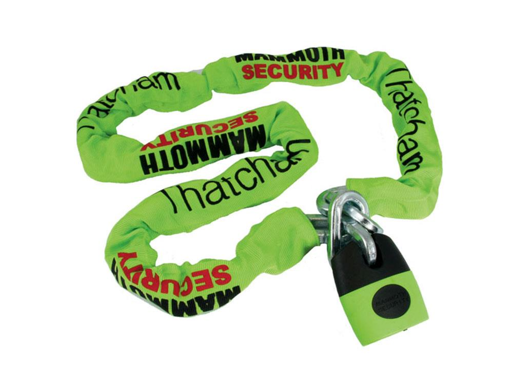 Mammoth Security chain