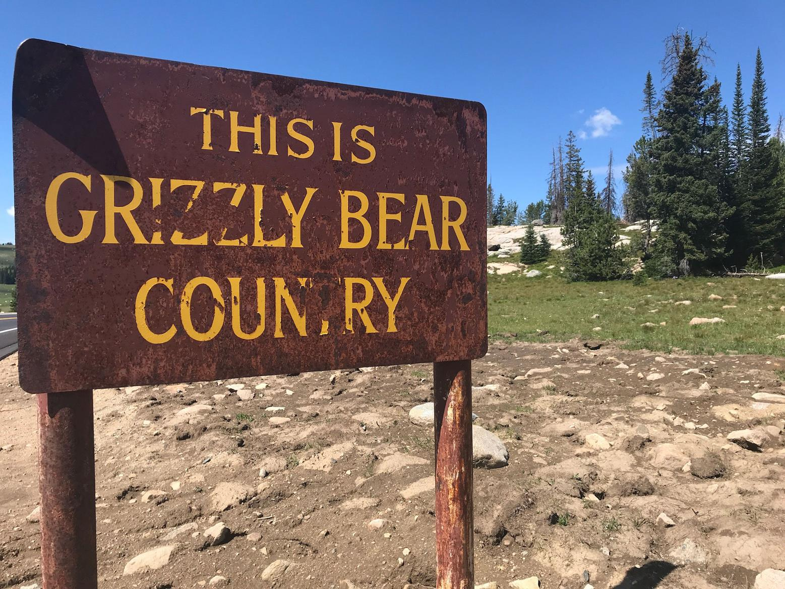I saw this sign, but no sign of bears