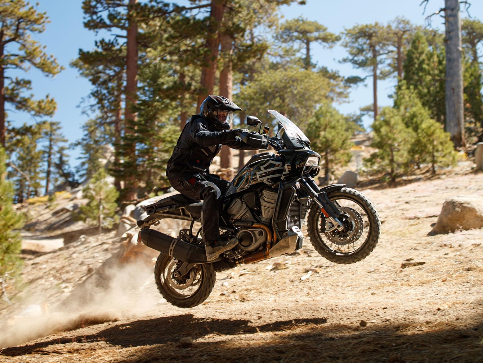 This is the Harley-Davidson Pan America jumping. We can imagine it made a bit of a bump when it came down again