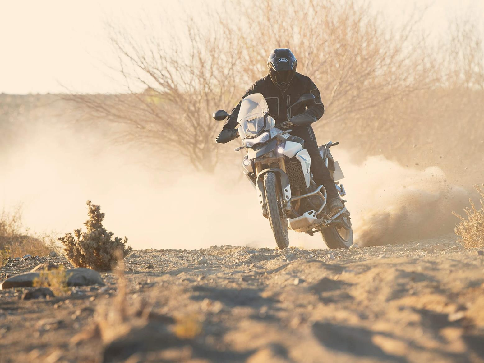 Triumph Tiger 900 Rally Pro sideways on desert