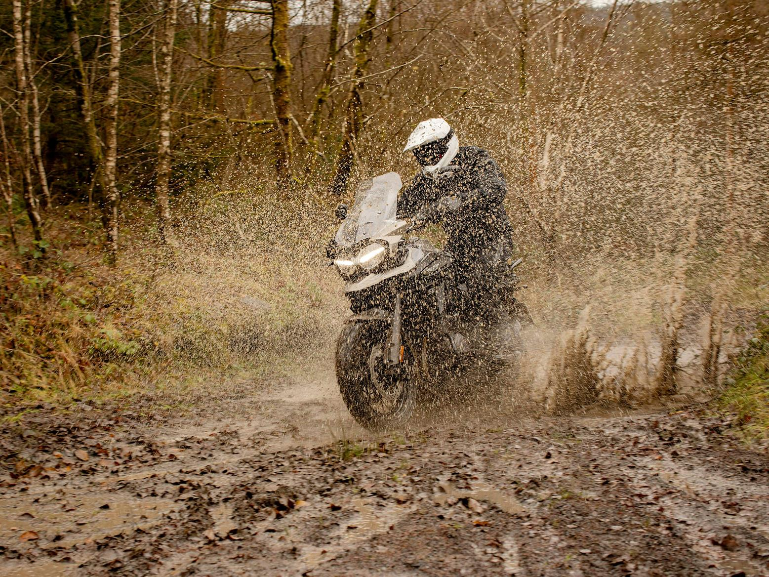 The Desert Edition Triumph gets muddy in a forest