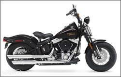 Harley-Davidson Cross Bones
