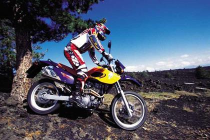 MZ BAGHIRA 660  (2001-2007)